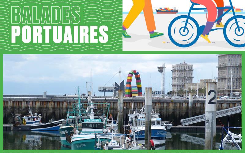 La biodiversité marine près de chez vous – 19 août 2020